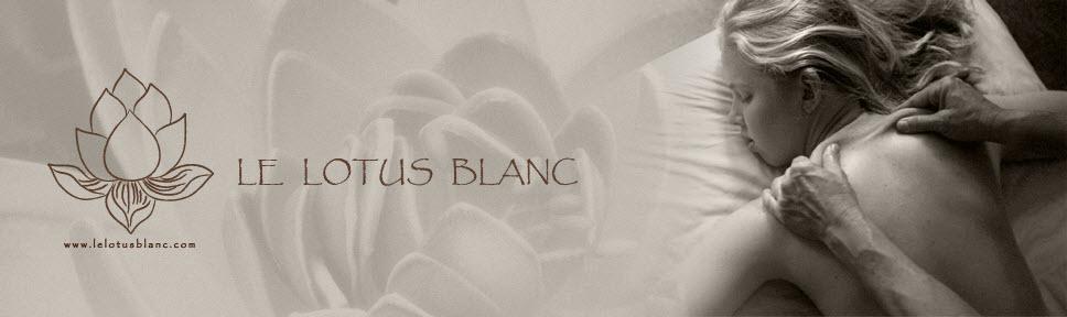 Le lotus blanc massage poitiers 86000 informations g n rales - Salon de massage poitiers ...